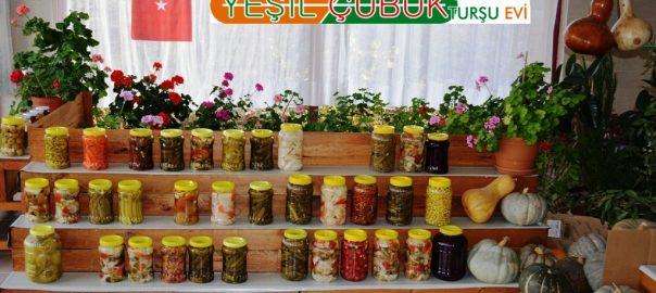 cubuk-ev-yapimi-tursulari-akillarda-kalan-lezzetli-yiyecek